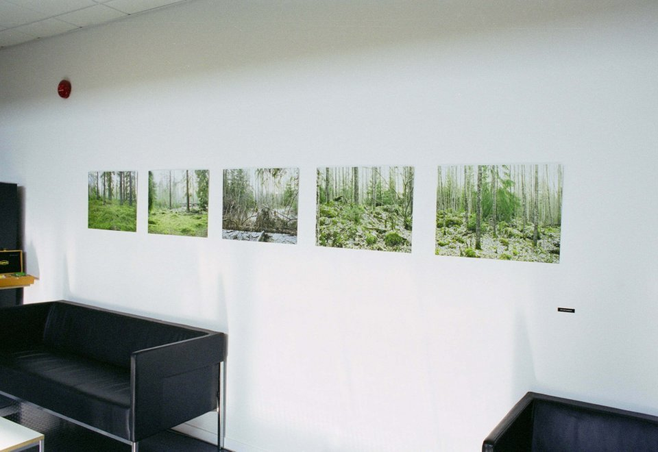 Installation view at MAQS Law Firm